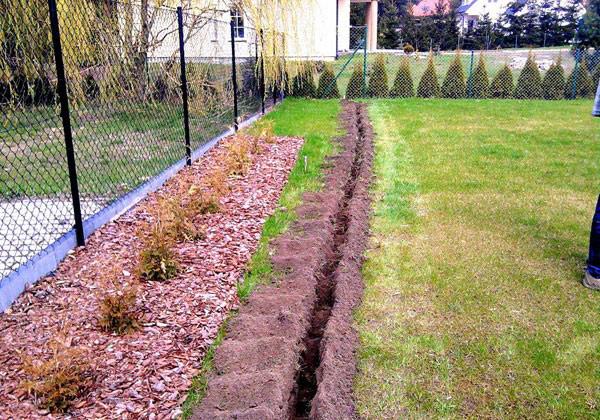 Fragment aranżacji ogrodu