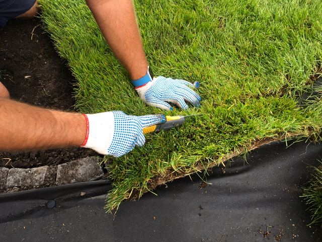 Przycinanie rolki trawy