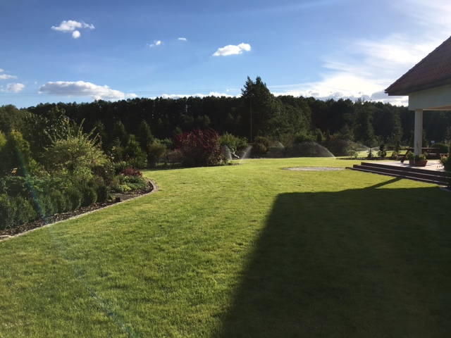 Nawadnianie trawnika